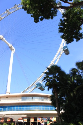 The Singapore Flyer, the world's largest Ferris wheel.
